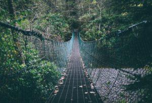 不気味な橋