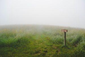 靄のかかった高原