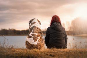河原に座る犬と人