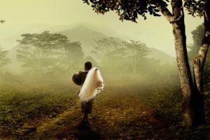 靄のかかる場所に立っている人